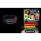 "Round Cake baking tins Rainbow Multi Layer - 1.5 "" Deep - Shallow Tins - 8"" x 8"" Pair"